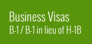 US Business Visas